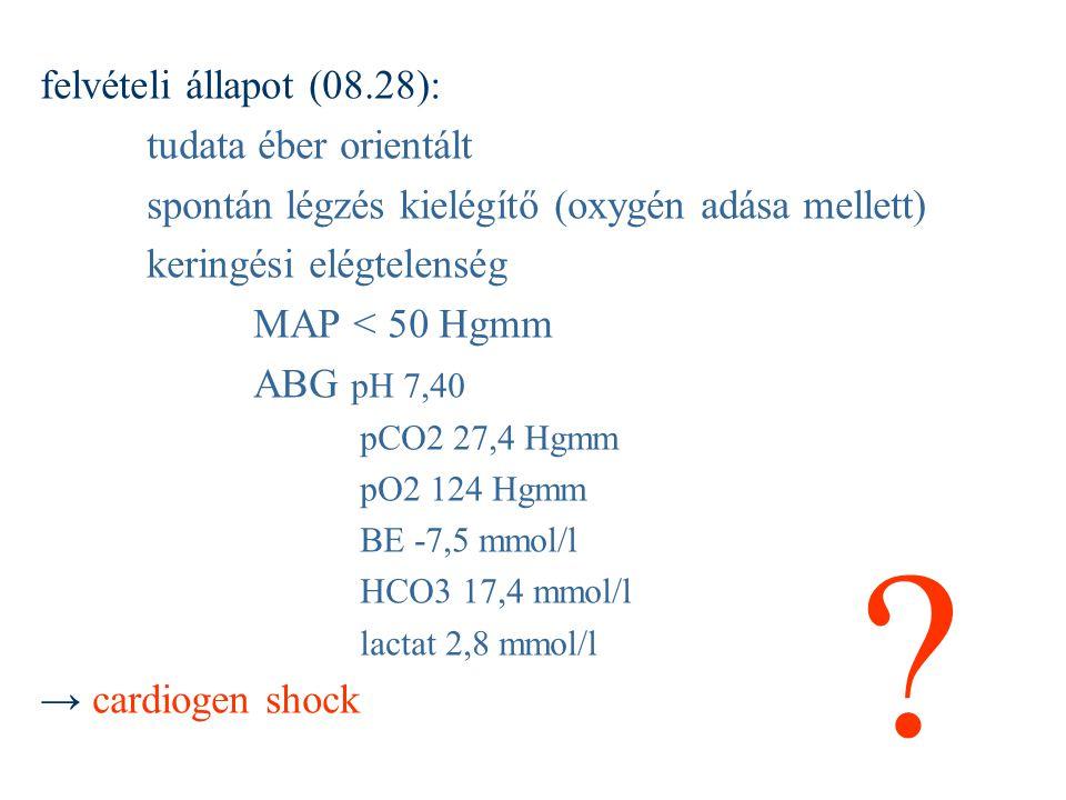 felvételi állapot (08.28): tudata éber orientált