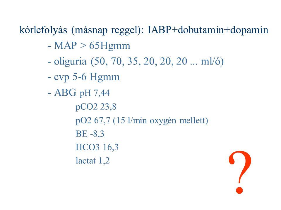 kórlefolyás (másnap reggel): IABP+dobutamin+dopamin