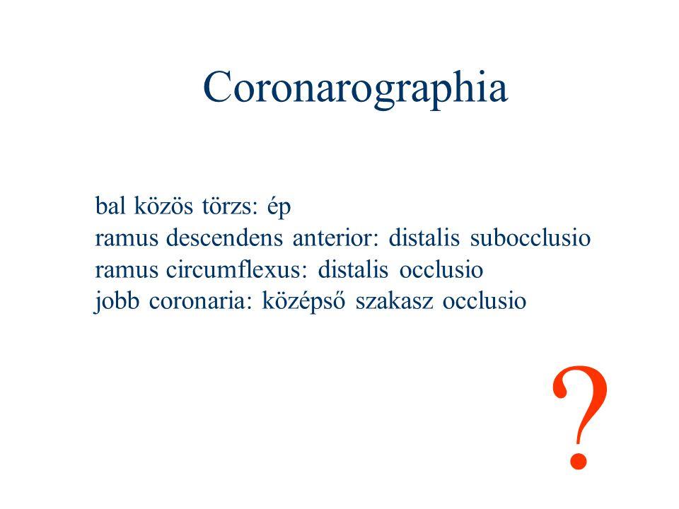 Coronarographia bal közös törzs: ép
