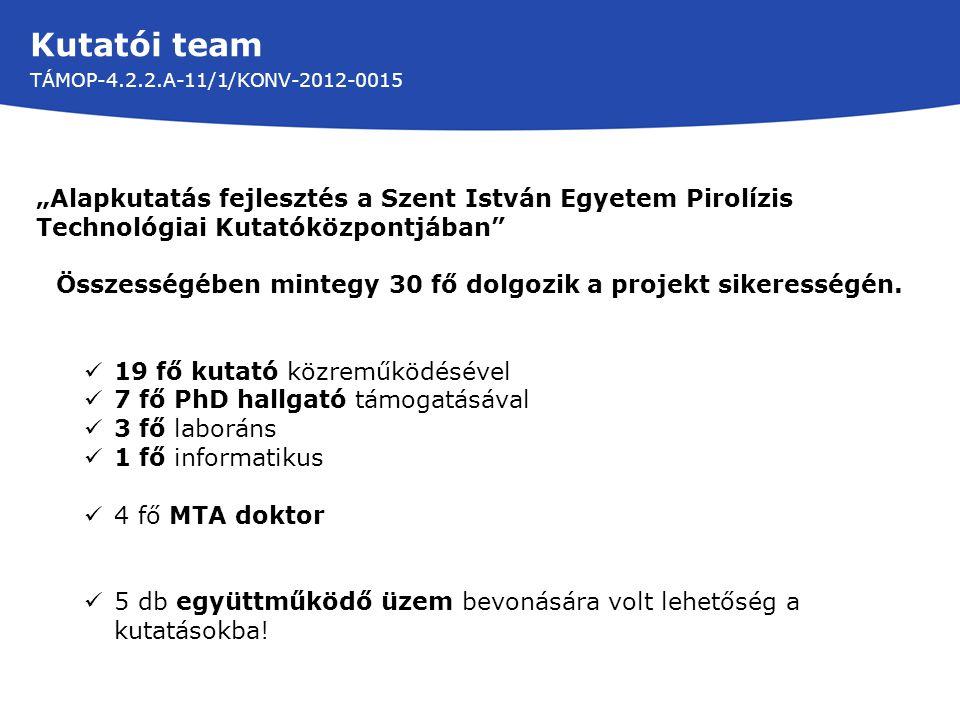 Kutatói team TÁMOP-4.2.2.A-11/1/KONV-2012-0015