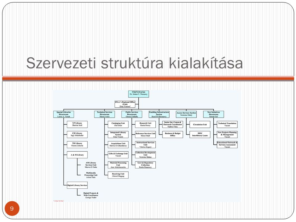 Szervezeti struktúra kialakítása
