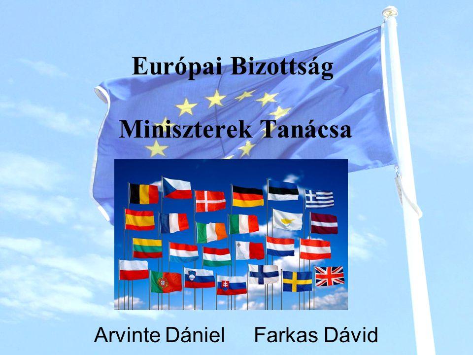 Európai Bizottság Miniszterek Tanácsa