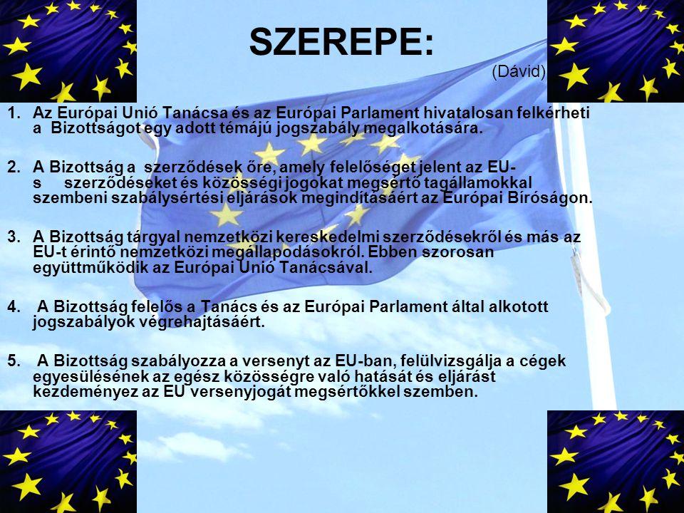 SZEREPE: (Dávid) Az Európai Unió Tanácsa és az Európai Parlament hivatalosan felkérheti a Bizottságot egy adott témájú jogszabály megalkotására.