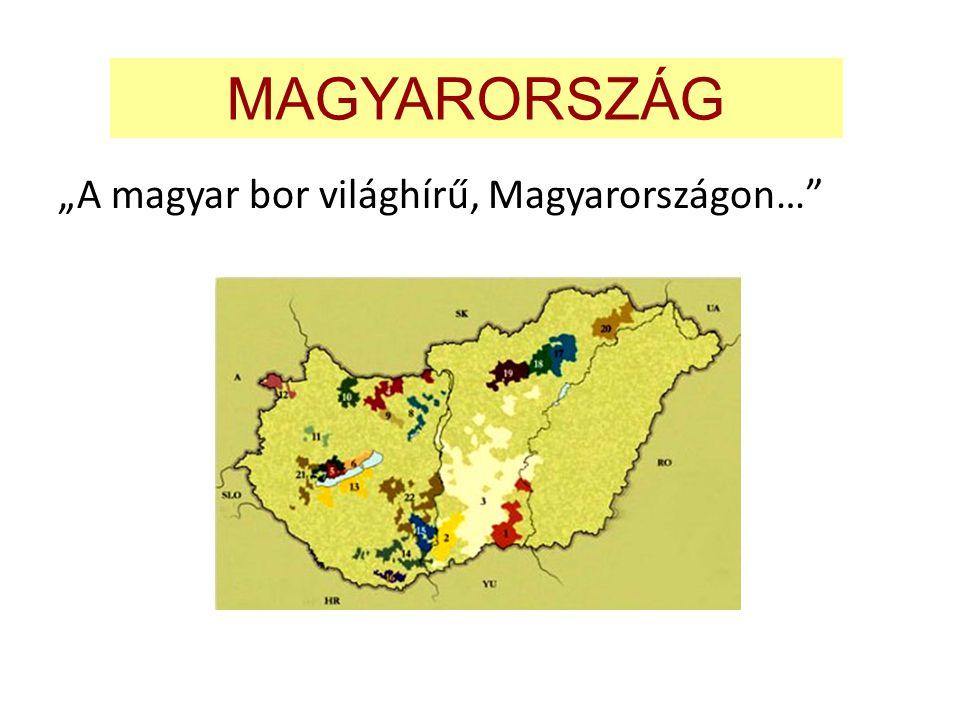 """MAGYARORSZÁG """"A magyar bor világhírű, Magyarországon…"""