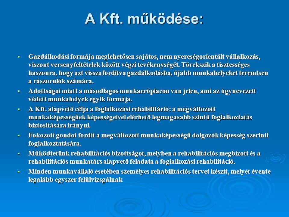 A Kft. működése: