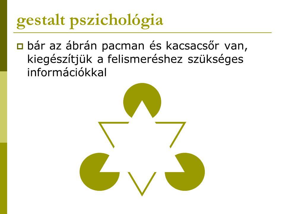 gestalt pszichológia bár az ábrán pacman és kacsacsőr van, kiegészítjük a felismeréshez szükséges információkkal.