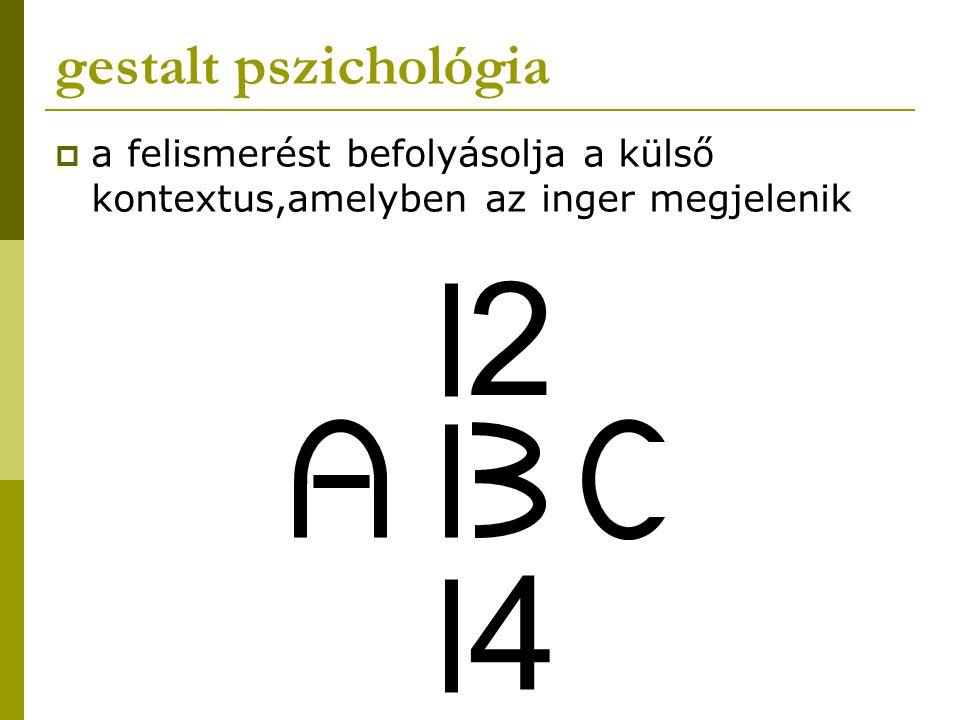 gestalt pszichológia a felismerést befolyásolja a külső kontextus,amelyben az inger megjelenik 2 4