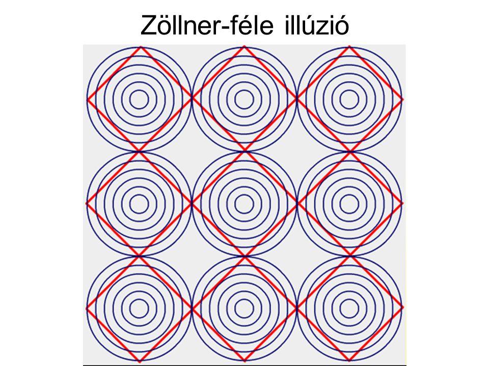 Zöllner-féle illúzió