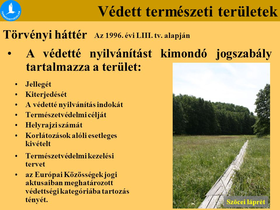 Védett természeti területek