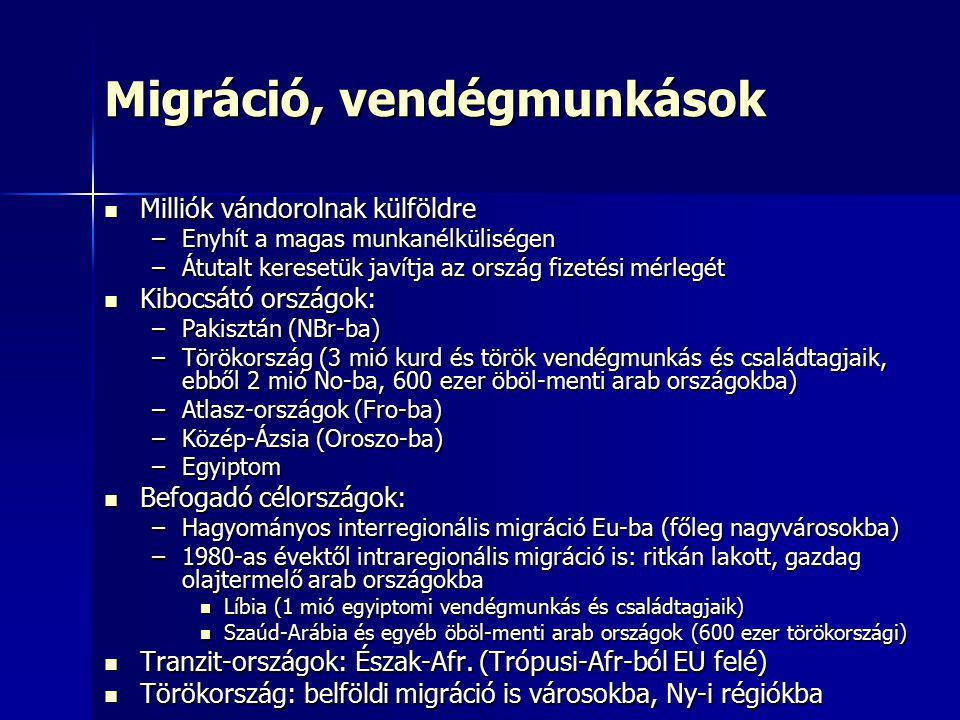 Migráció, vendégmunkások
