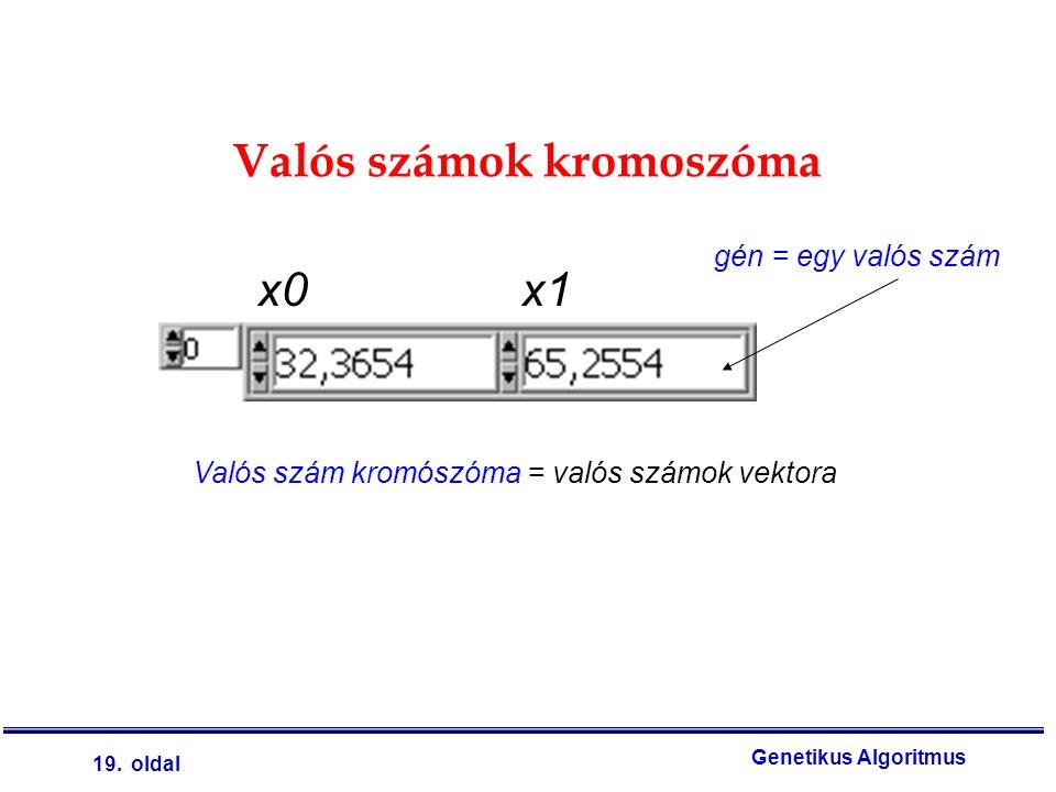 Valós számok kromoszóma