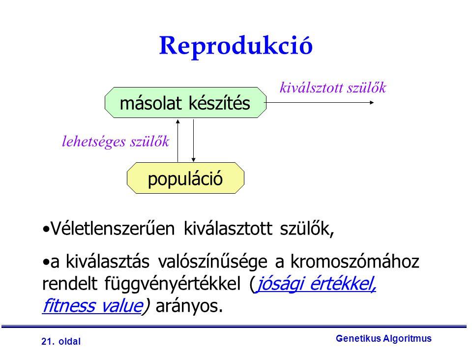 Reprodukció másolat készítés populáció