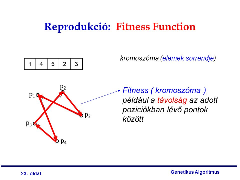 Reprodukció: Fitness Function