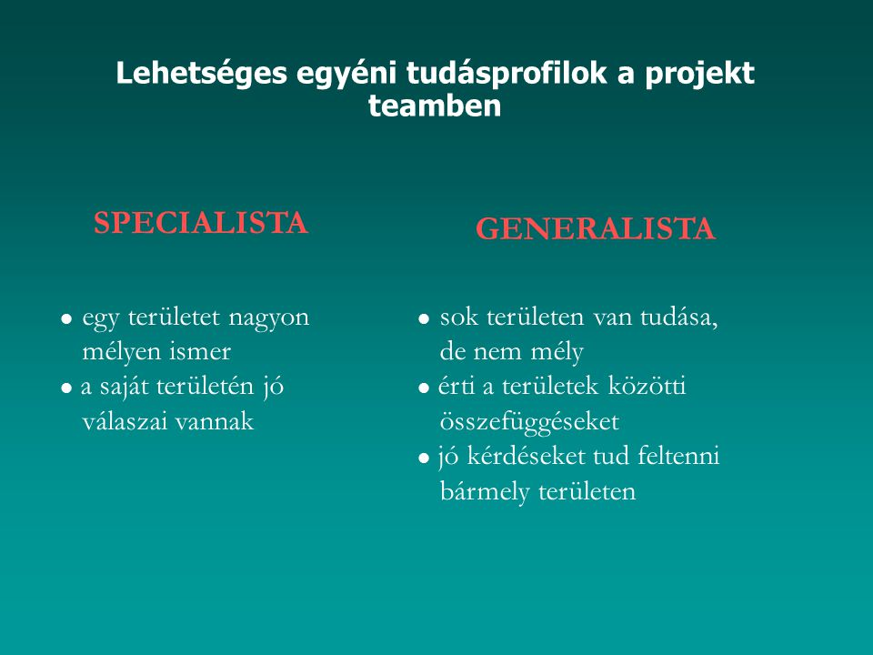 Lehetséges egyéni tudásprofilok a projekt teamben