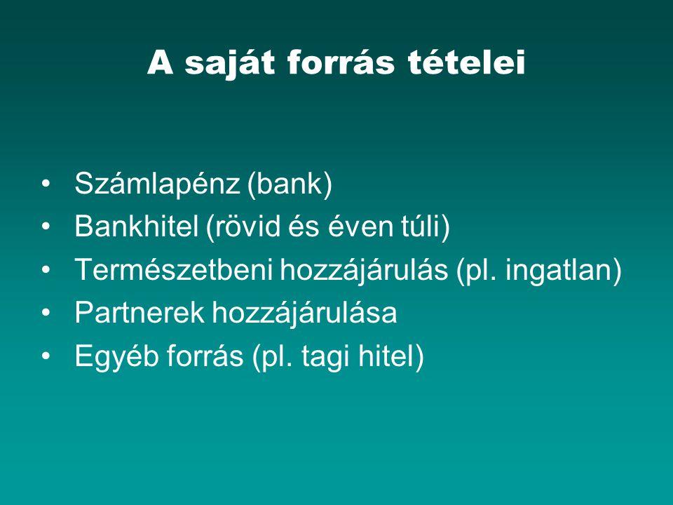 A saját forrás tételei Számlapénz (bank)