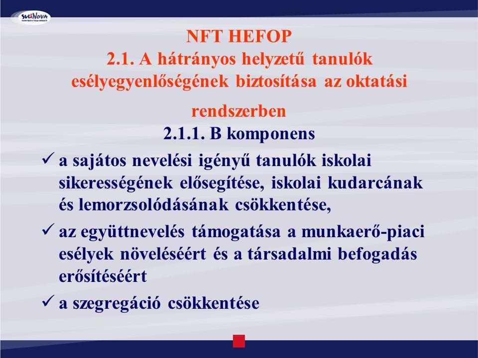 NFT HEFOP 2.1. A hátrányos helyzetű tanulók esélyegyenlőségének biztosítása az oktatási rendszerben