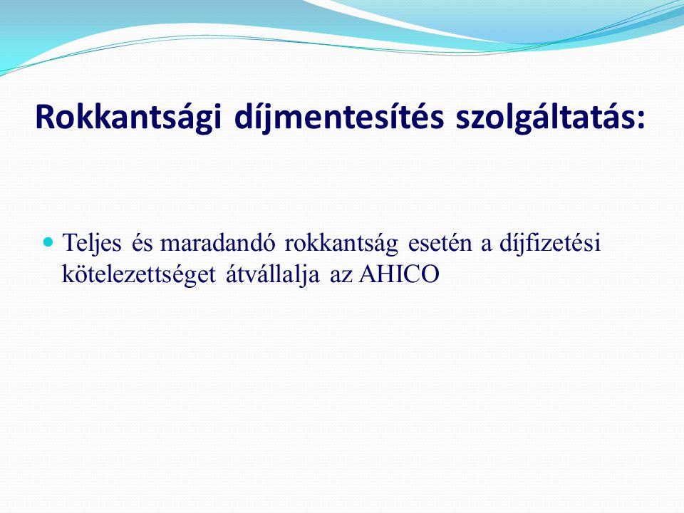 Rokkantsági díjmentesítés szolgáltatás: