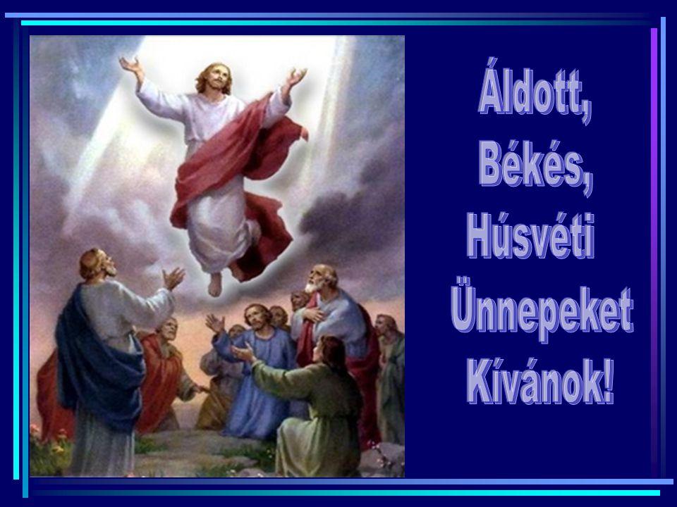 Áldott, Békés, Húsvéti Ünnepeket Kívánok!