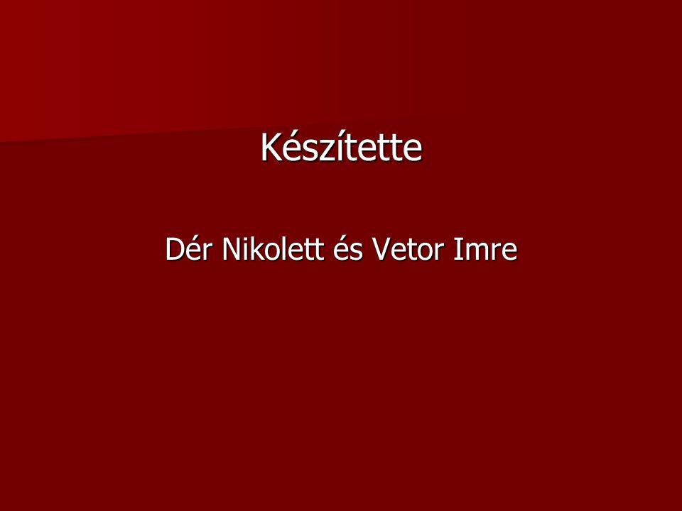 Dér Nikolett és Vetor Imre