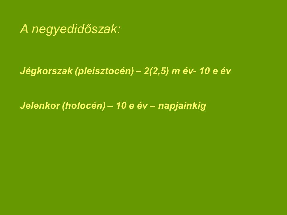 A negyedidőszak: Jégkorszak (pleisztocén) – 2(2,5) m év- 10 e év