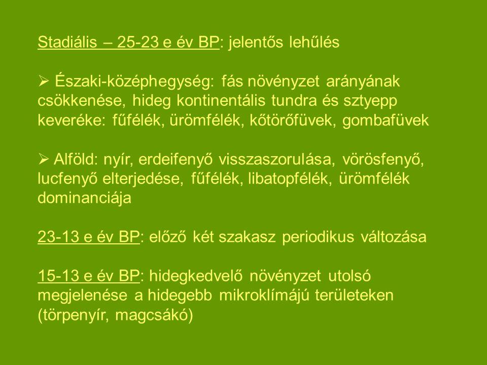 Stadiális – 25-23 e év BP: jelentős lehűlés