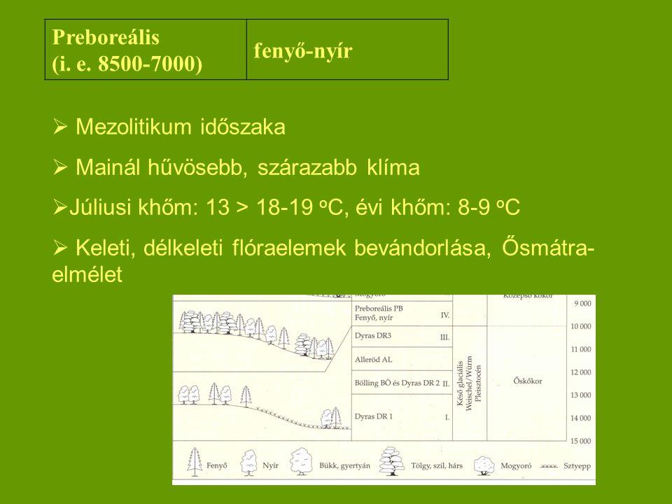 Preboreális (i. e. 8500-7000) fenyő-nyír. Mezolitikum időszaka. Mainál hűvösebb, szárazabb klíma.