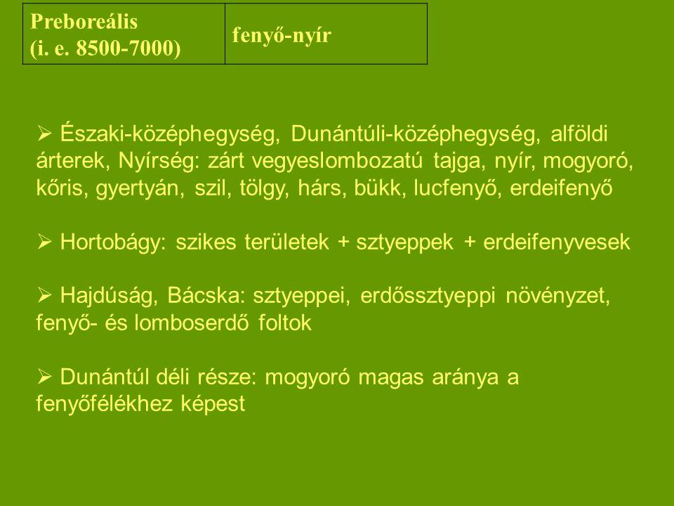 Preboreális (i. e. 8500-7000) fenyő-nyír.