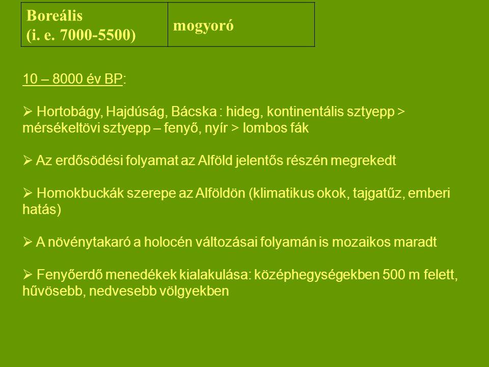 Boreális mogyoró (i. e. 7000-5500) 10 – 8000 év BP: