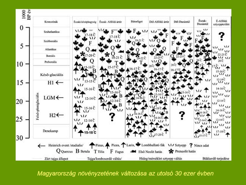 Magyarország növényzetének változása az utolsó 30 ezer évben