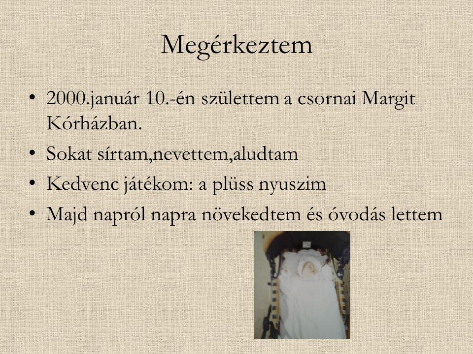 Megérkeztem 2000.január 10.-én születtem a csornai Margit Kórházban.