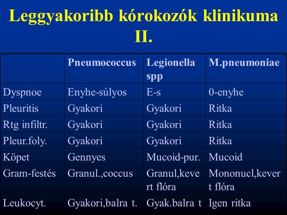 Leggyakoribb kórokozók klinikuma II.