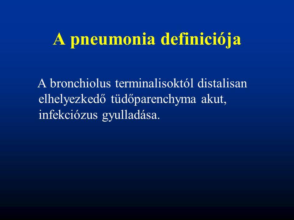 A pneumonia definiciója