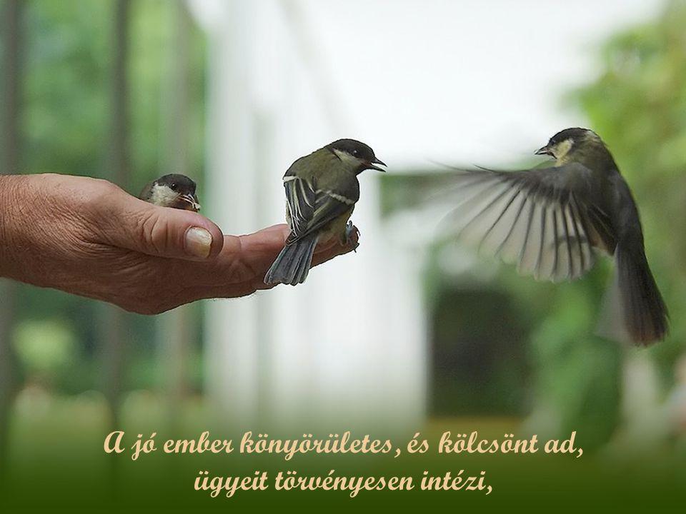A jó ember könyörületes, és kölcsönt ad, ügyeit törvényesen intézi,