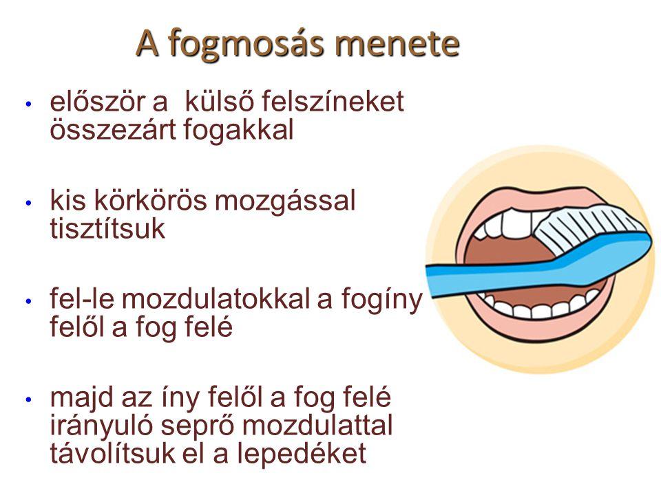 A fogmosás menete először a külső felszíneket összezárt fogakkal