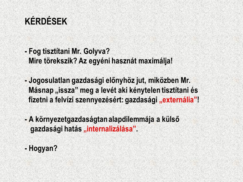 KÉRDÉSEK - Fog tisztítani Mr. Golyva. Mire törekszik