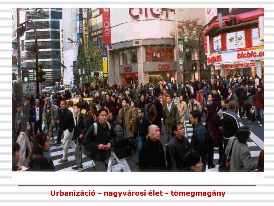 Urbanizáció - nagyvárosi élet - tömegmagány