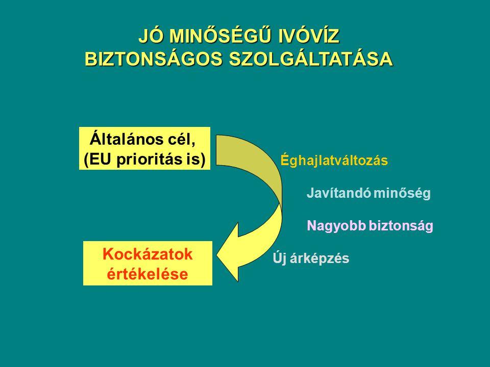 BIZTONSÁGOS SZOLGÁLTATÁSA