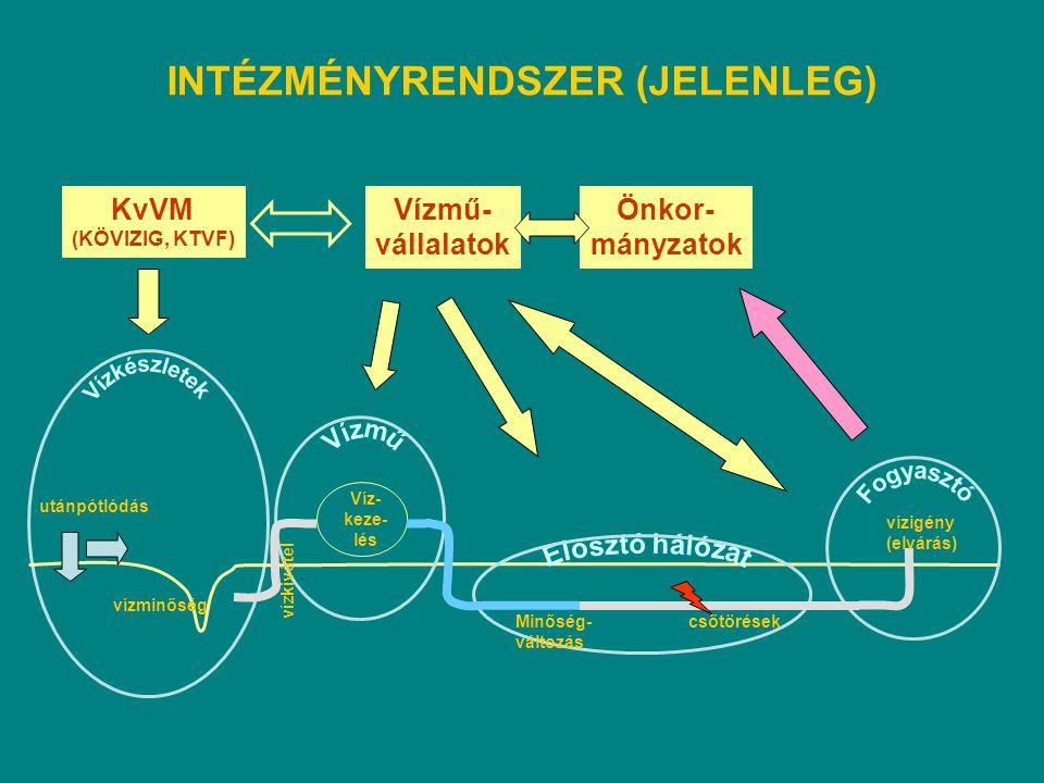 Vízkészletek INTÉZMÉNYRENDSZER (JELENLEG) KvVM Vízmű- vállalatok