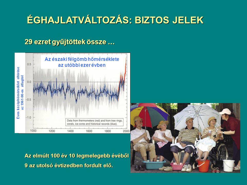 Az északi félgömb hőmérséklete Éves középhőmérséklet eltérése