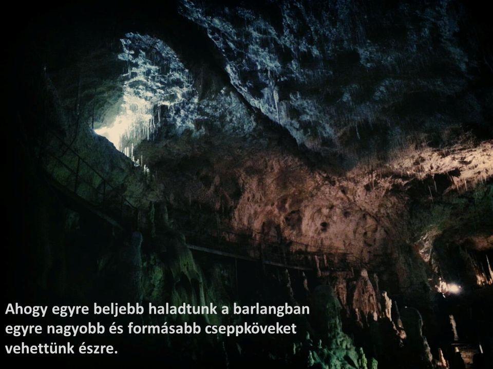 Ahogy egyre beljebb haladtunk a barlangban egyre nagyobb és formásabb cseppköveket vehettünk észre.