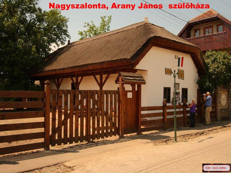 Nagyszalonta, Arany János szülőháza