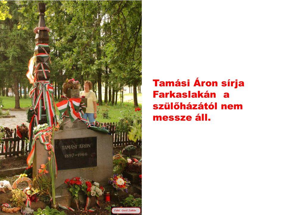 Tamási Áron sírja Farkaslakán a szülőházától nem messze áll.