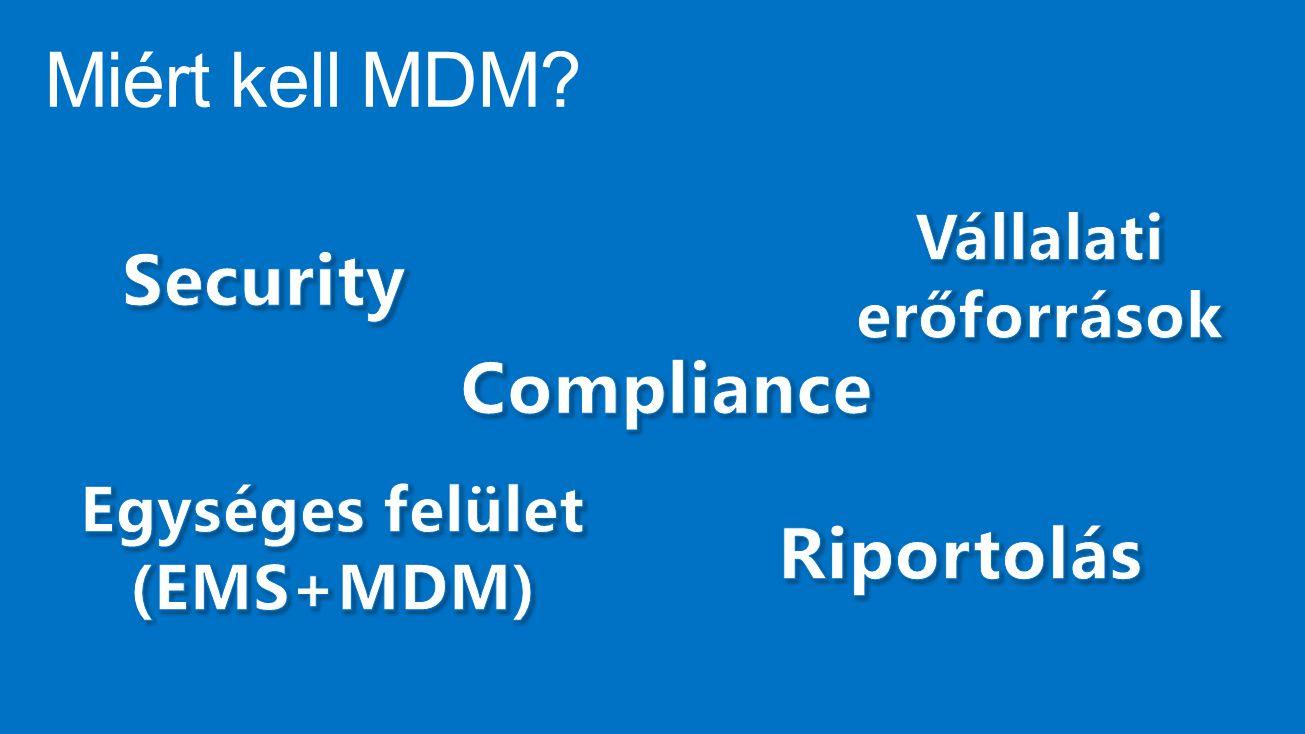 Vállalati erőforrások Egységes felület (EMS+MDM)