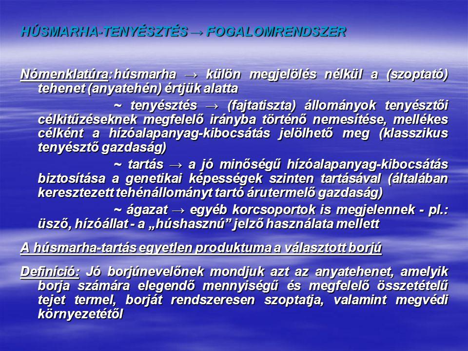 HÚSMARHA-TENYÉSZTÉS → FOGALOMRENDSZER