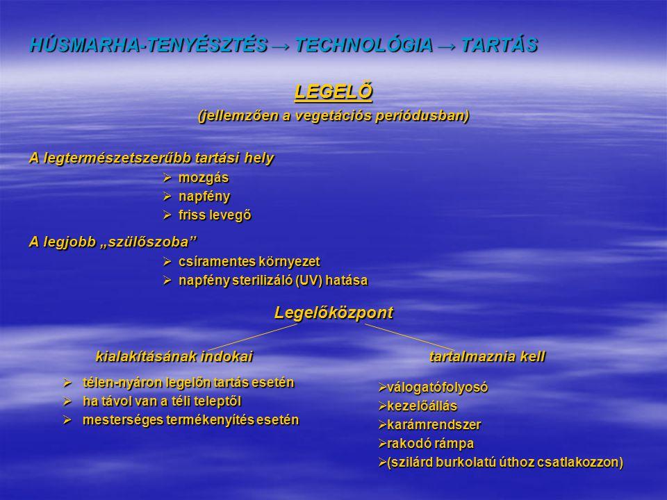 HÚSMARHA-TENYÉSZTÉS → TECHNOLÓGIA → TARTÁS