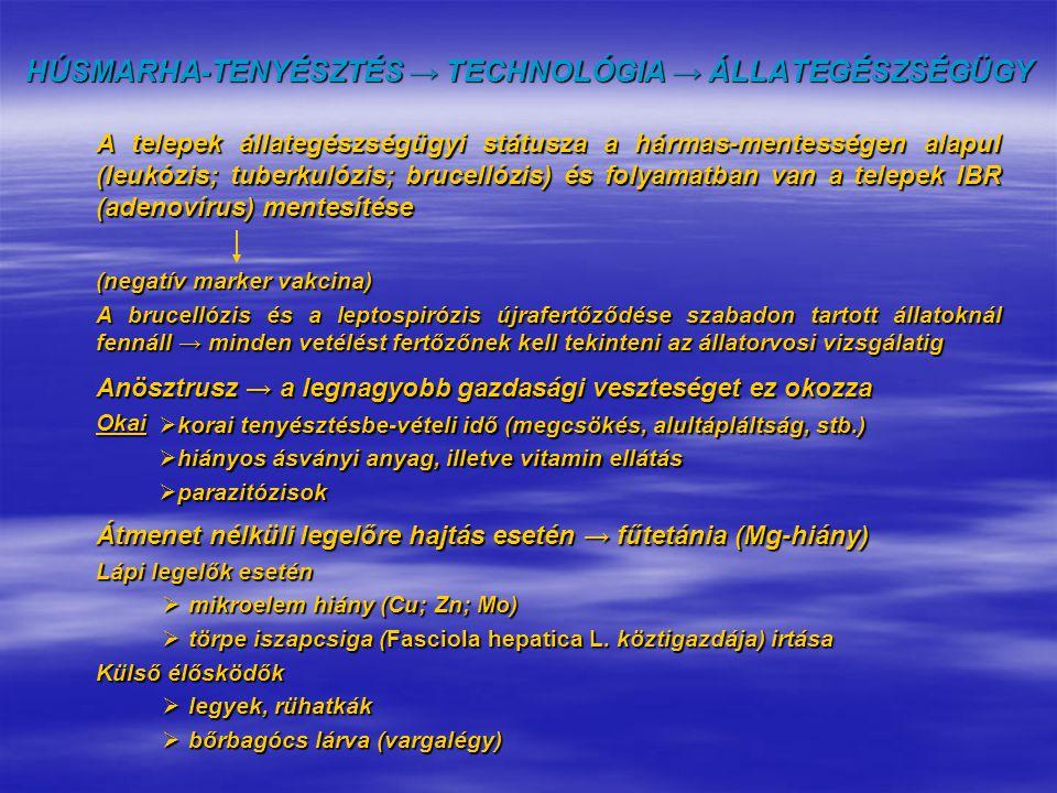 HÚSMARHA-TENYÉSZTÉS → TECHNOLÓGIA → ÁLLATEGÉSZSÉGÜGY