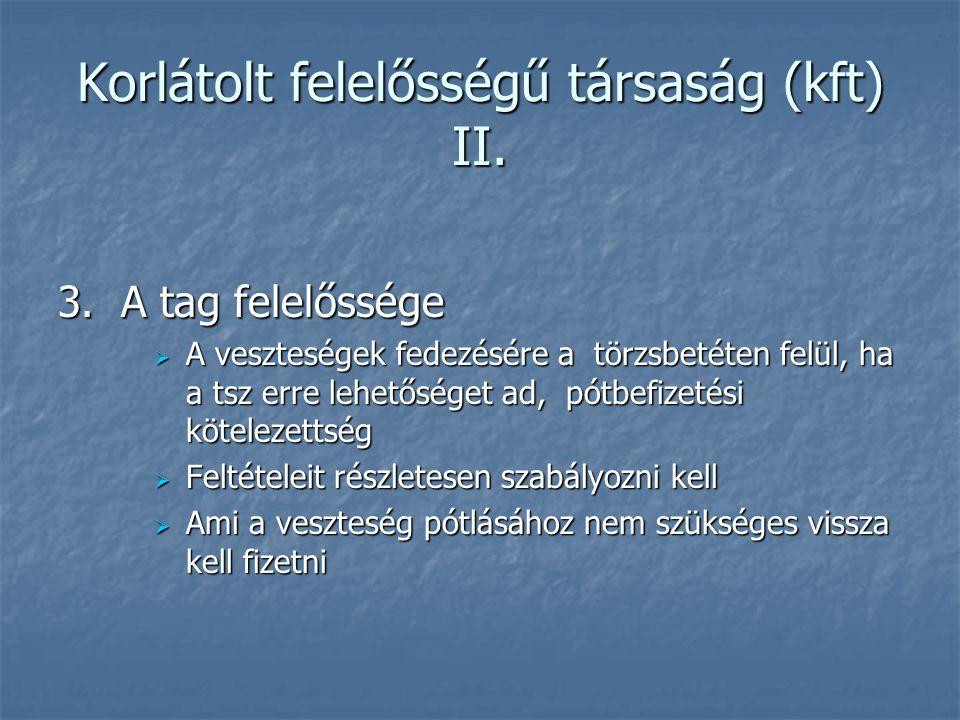 Korlátolt felelősségű társaság (kft) II.