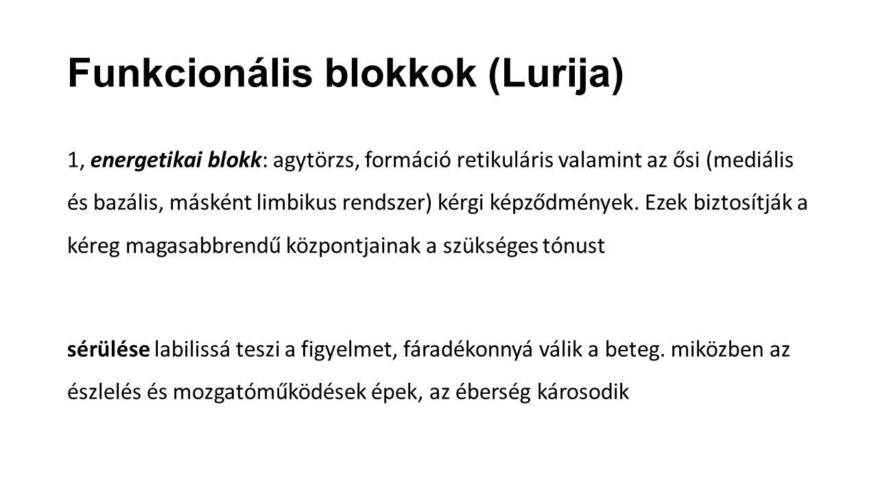 Funkcionális blokkok (Lurija)