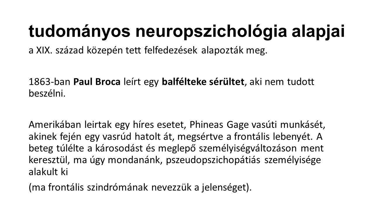 tudományos neuropszichológia alapjai