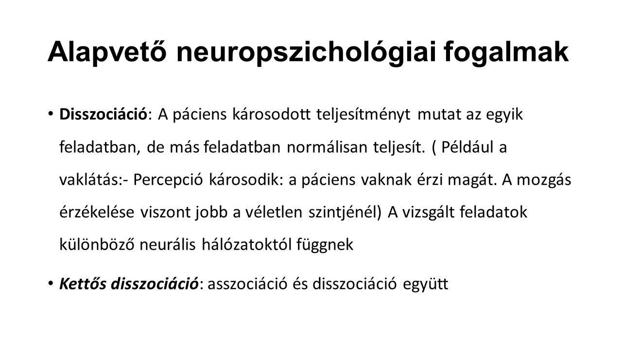 Alapvető neuropszichológiai fogalmak